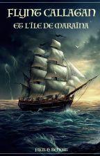 Les fabuleuses aventures de Flynt Callagan - Incidents sur l'Île de Maraïna by Paul2572