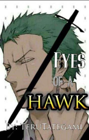 Eyes of a Hawk: Zoro x Reader