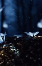 Adventures Spirt  by BeeQuizGamer