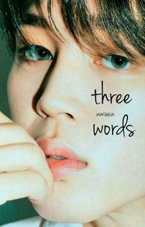 THREE WORDS ▻ PJM by nnraein