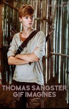 Thomas Sangster GIF Imagines by lovelydol_