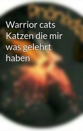 Warrior cats Katzen die mir was gelehrt haben by Phoenixfeder_13