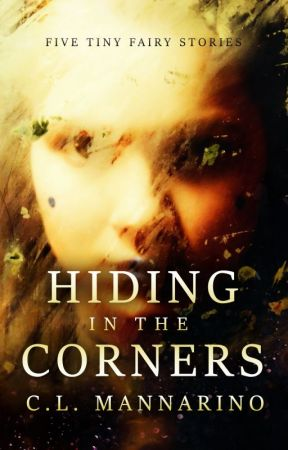 Hiding in the Corners by clmannarino