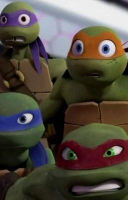 TMNT x Reader Stories - Donatello x Reader - The Distraction