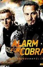 Alarm für Cobra 11-Wiedersehen by GinnyWeasley124