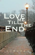 Love Me Till The End by Virux23