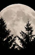 Una noche de luna llena by LILIYBRANDON