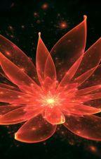 報復 Bàofù II: Crimson Lotus: Ten Miles of Peach Blossoms Fanfiction by YeGenMo