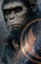 Apes In The Galaxy by The_Skywalker_Family