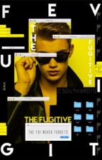 The Fugitive by csouthard1s