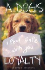 A dog's Loyalty by MatthewMondero