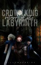 crown king: return of the labyrinth by pillowsonfire