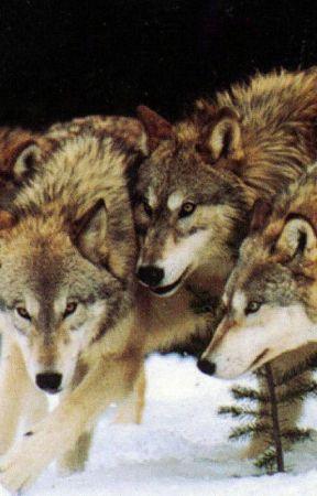 Loki's Wolves by RengadeWriting