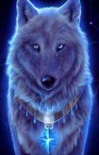 Dzīvnieku stāsts / Animal story by Animal2007