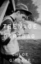 Teenage Dirtbag by awkwardperfection