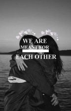 We are Meant for Each Other by LiFa55