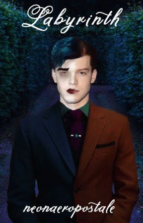 Labyrinth: A Jeremiah Valeska Story *COMPLETED* by neonaeropostale