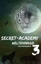 Secret-Academy 3 Weltenmagie by Foxy_0209