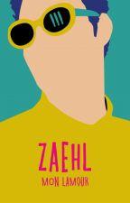 ZAEHL by ergo_escribo