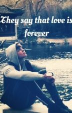 They say that love is forever by Dimplesxirwin5