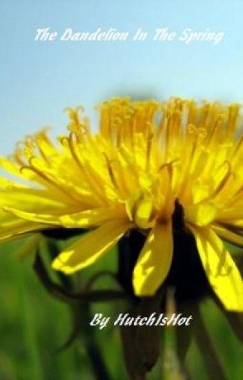 The Dandelion In The Spring