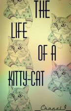 The life of a Kitty-cat by _ChanelI_