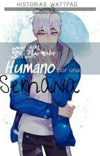 Humano Por Una Semana Sans x Chara  by Chara_forever_