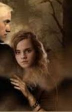Draco and Hermione forbidden love story by Fallinginlove5242
