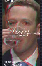 Z U C C E D (mark zuckerberg x reader) by lashiruu