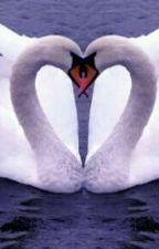 Első látásra szerelem volt!? by becaaa0406