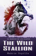 The Wild Stallion by magbmara