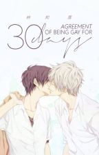 Agreement of Being Gay for 30 Days PT-BR by Calullum