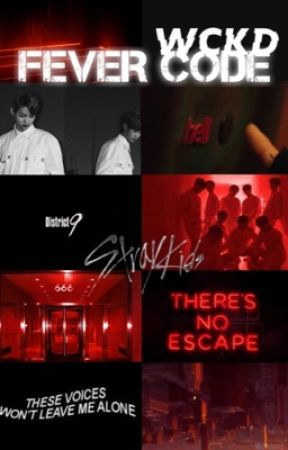 The Fever Code - Stray Kids ff by ultfreckles