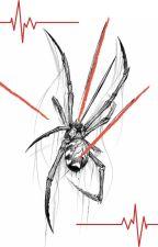 Nowy początek - Spiderman by LunaMurderer