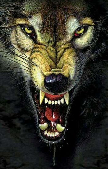 Đọc Truyện Ma sói - TruyenFic.Com