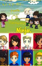 NINJAGO: FAMILY OF ELEMENTAL NINJA by ColeBlackNinja