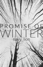 Promise of Winter | Lellinger by navy_lion