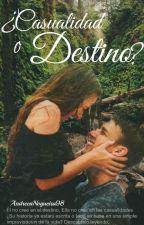 ¿Casualidad o Destino? (Editado) by AndreeaNogueira98