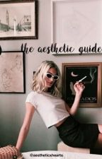 the aesthetic guide by aestheticxhearts