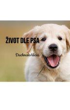 Život dle psa by DuchnaleAlicia