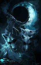 Frumosul și bestia by Bilexa