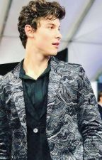 Help Me - A Shawn Mendes Fanfiction by shawnieboyimagine