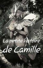 La petite histoire de Camille by petitelibellule