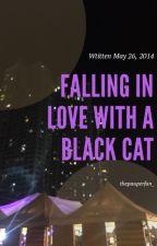 Falling In Love With A Black Cat by ninjhaaaa