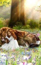Wolf Akademie by mystorys21