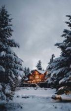 La maison dans les bois by bleumel