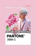Accidental Meeting ( A GOT7 Bambam & Twice Tzuyu Fanfiction ) by erde22