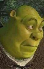 Shrek x reader UwU by FREAKyouDUDE
