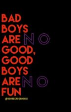 Bad boys are no good, good boys are no fun  by bookreader00021