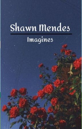 SHAWN MENDES IMAGINES by just_imagine_98